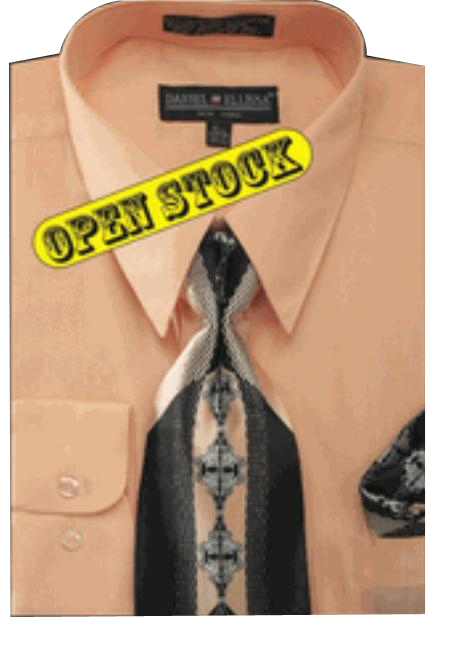 Basic Dress Shirt with Tie and Hanky Set