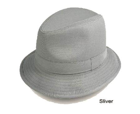 New Fedora Trilby Hat