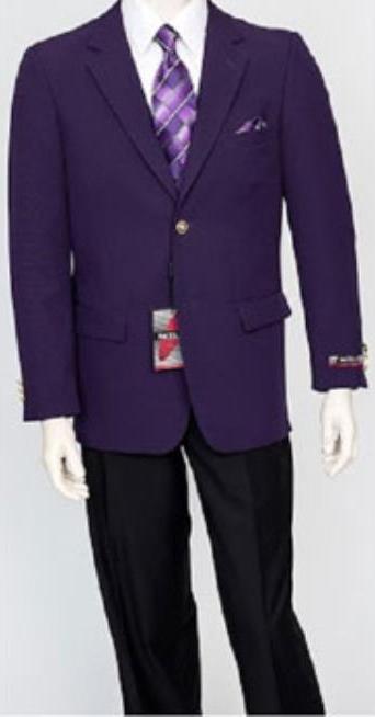 Men's Pacelli Classic Dark Purple Blazer Jacket Blair