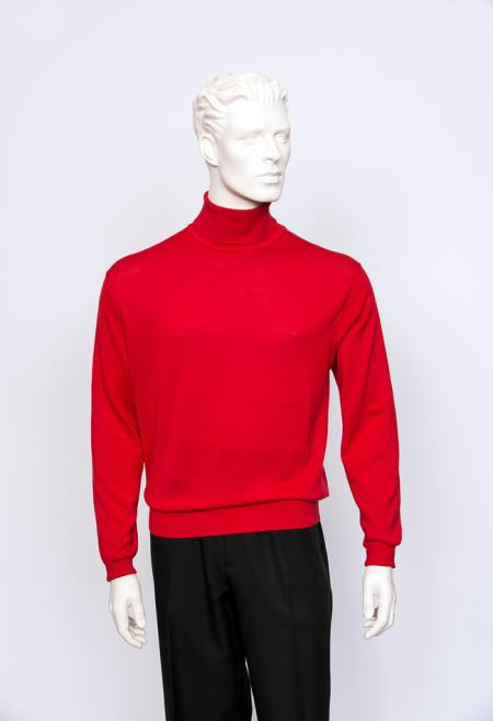 Mens Turtle Neck Fine