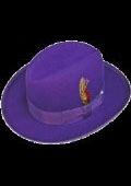 Mens Purple Hat