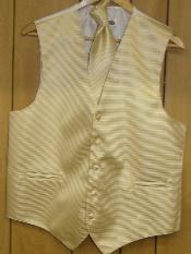Beige Vest & Tie set