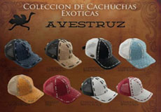 KA6765 Hats Genuine Ostrich Mesh Trucker Baseball Caps DiffColors