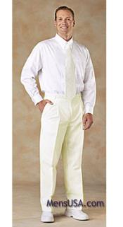 HNA2 Pleated Slacks Pants / Slacks Plus White Shirt