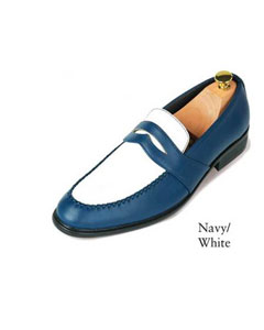 Navy Blue Shade and