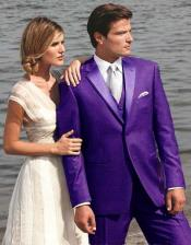 9T01 Stunning Purple color shade Two Button Tuxedo 7