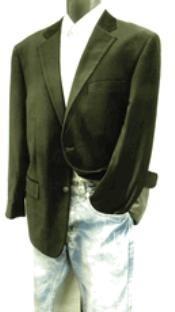 2 Button Style Velvet Blazer