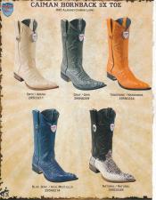 EEE3 3X-Toe cai ~ Alligator skin Hornback Cowboy Western