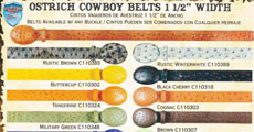 Ostrich Western Cowboy Belt