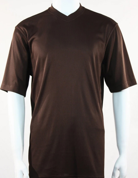 Bassiri Short Sleeve Brown Shirts